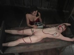 A volume of sexual violence in just one BDSM video