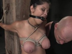 Sexy brunette gets a huge cock in their way twat and mouth
