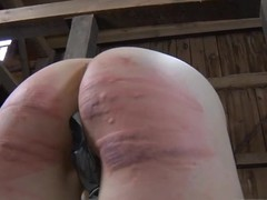 Beauty gets their way nipples shivered in advance of harrowing clamping