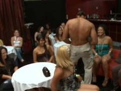 Cute stripper gets his pecker sucked by sundry hawt chicks